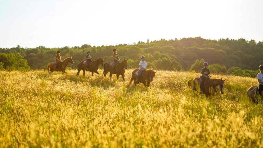 Campers ride horses through field at sunset