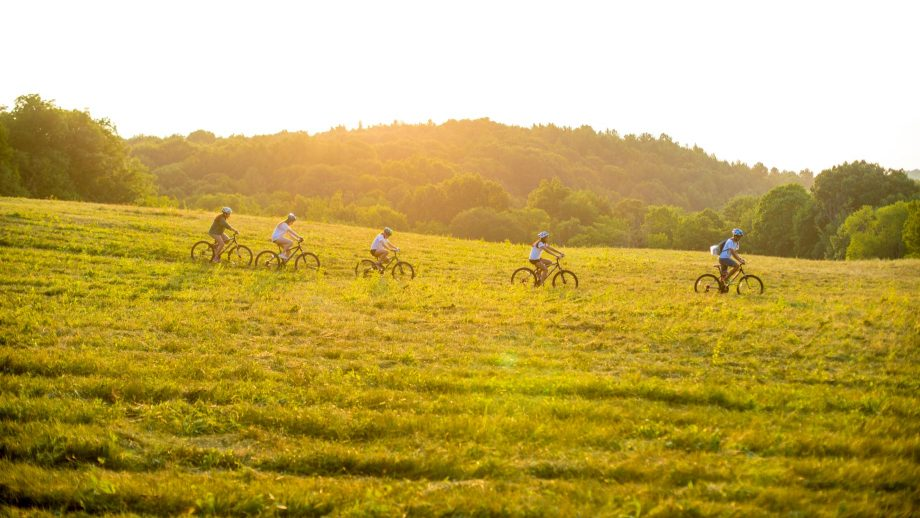 Group mountain bikes through field at sunset