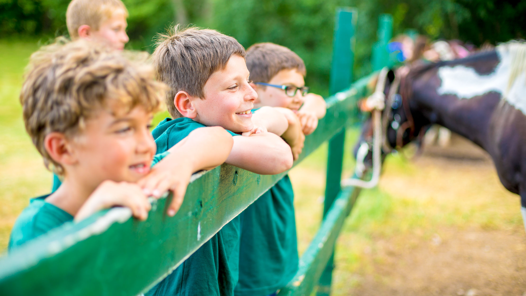 Boys lean against fence of horse paddock