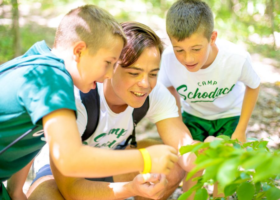 Staff member and two campers look at a plant